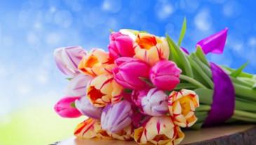 Мартовские праздники!